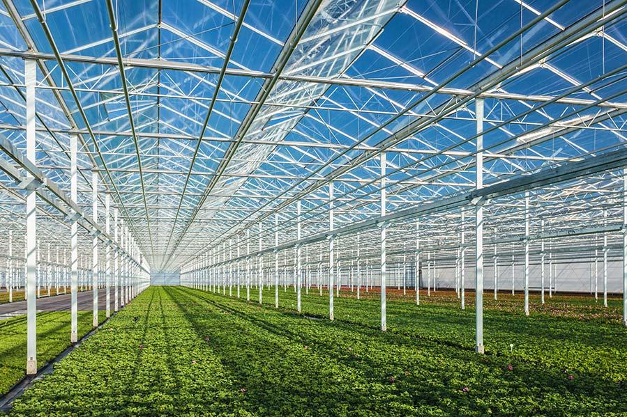Carbon-Collectors-Greenhouse-Biogenic-CO2